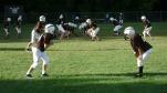 SB Dolphins Football 115